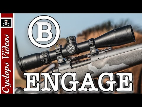 Bushnell Rifle Scope Review Engage