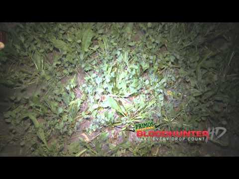 BloodHunter HD Promo
