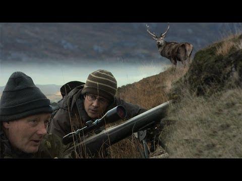 Deer stalking - Patrick Barkham in Scottish Highlands