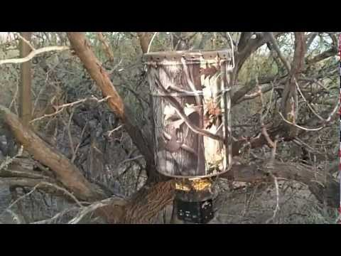 Stealth Moultrie all in one hanging deer feeder