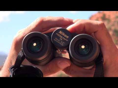Nikon Prostaff 7S 10x42 Binos Video Review