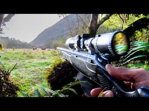 Hunting In Ambush (How I Deer Hunt a Meadow)