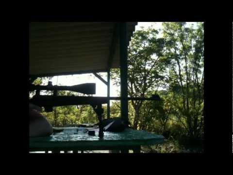Rifle Scope Review Barska 6.5-20x50mm AO Target Dot Reticle Tracking