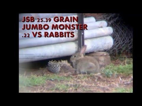 JSB Jumbo Monster Vs Rabbits Daystate Hunstman XL .22 40 ft lbs