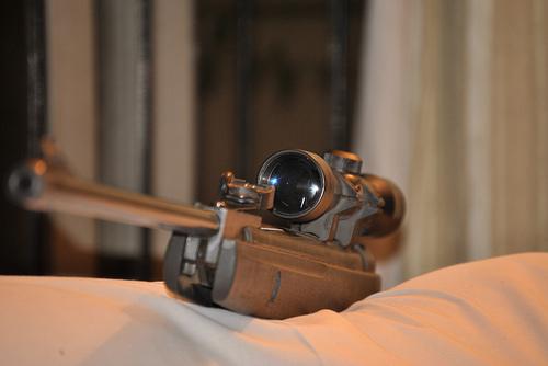 best pellet gun for hunting squirrels
