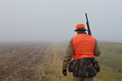 best scope for deer hunting for the money