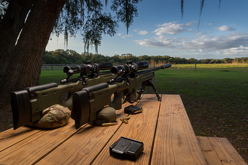 best scope for 308, best 308 scope, best long range scope for 308, best tactical scope for 308