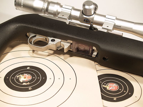 best scope for ruger 10 22, ruger 10 22 scope suggestions, ruger 10 22 scope recommendation