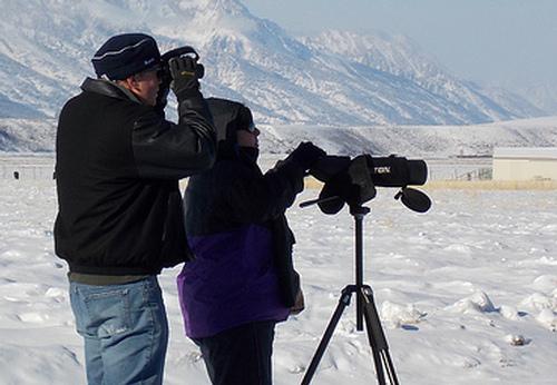 spotting scope vs binoculars, binoculars vs spotting scope, spotting scope or binoculars