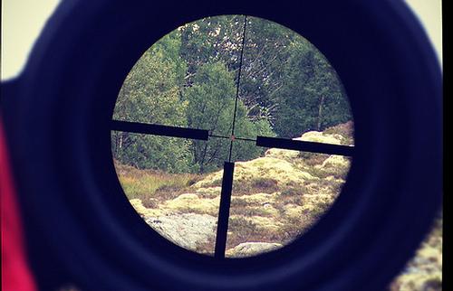 450 bushmaster scope