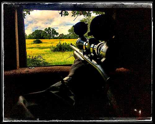 50mm scope, 50mm rifle scope