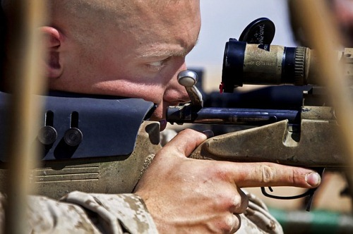 best scope for 6.5 x55, best scope for 6.5x55